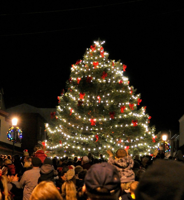 Community Tree Lighting + Bonfire + Refreshments + Carols